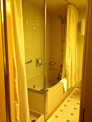 Seperate shower and bathtub with a shower in superior suite