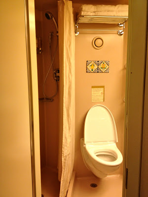 Interior Stateroom Bathroom shower and toilet
