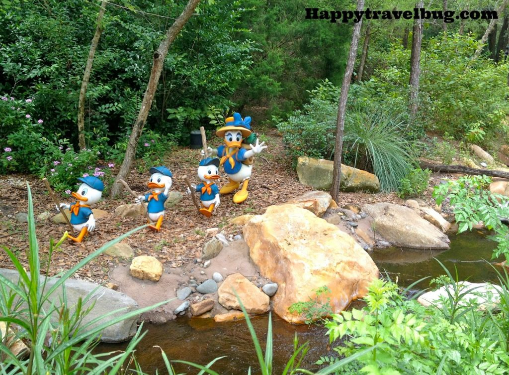 Daisy Duck with Huey, Louie and Dewey Duck exploring at Animal Kingdom