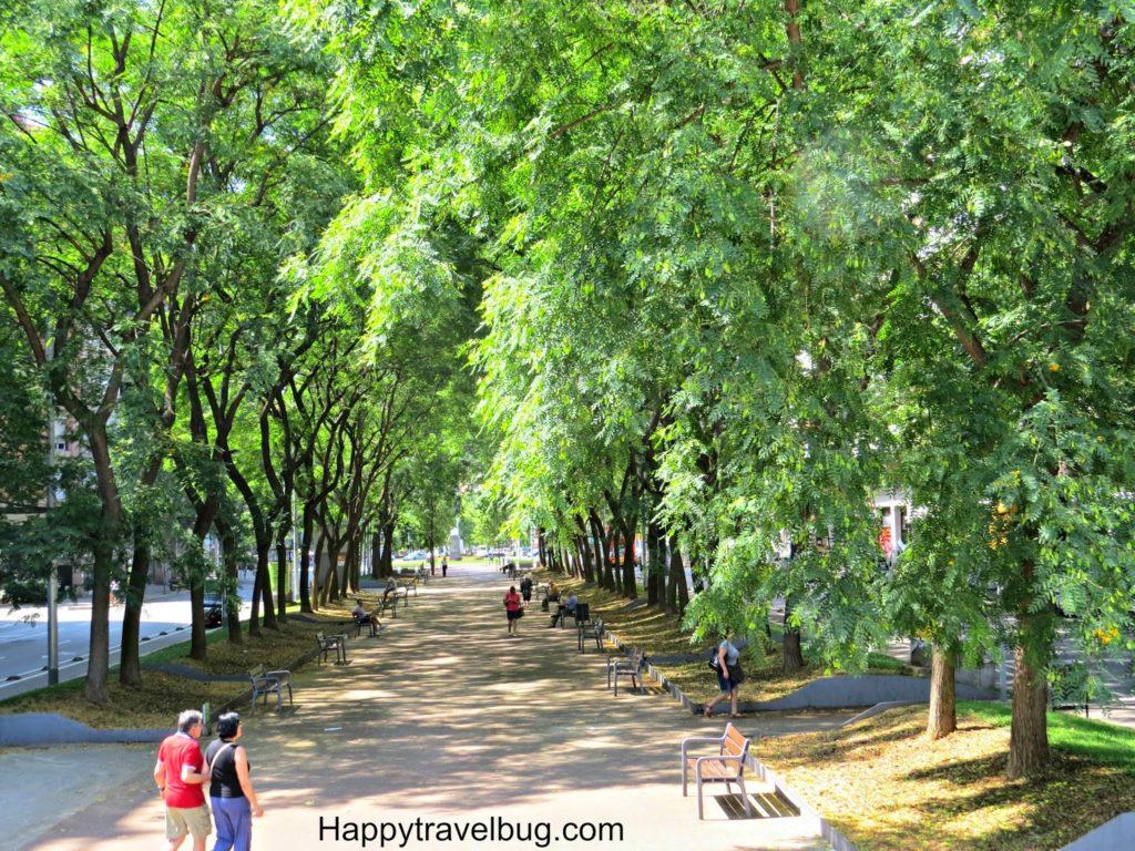 Beautiful tree lined streets in Barcelona, Spain