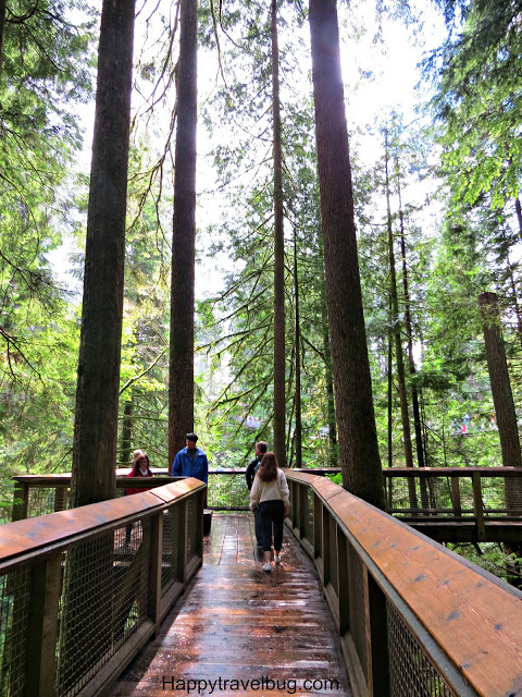 Capilano Suspension Bridge Park | Vancouver | Canada