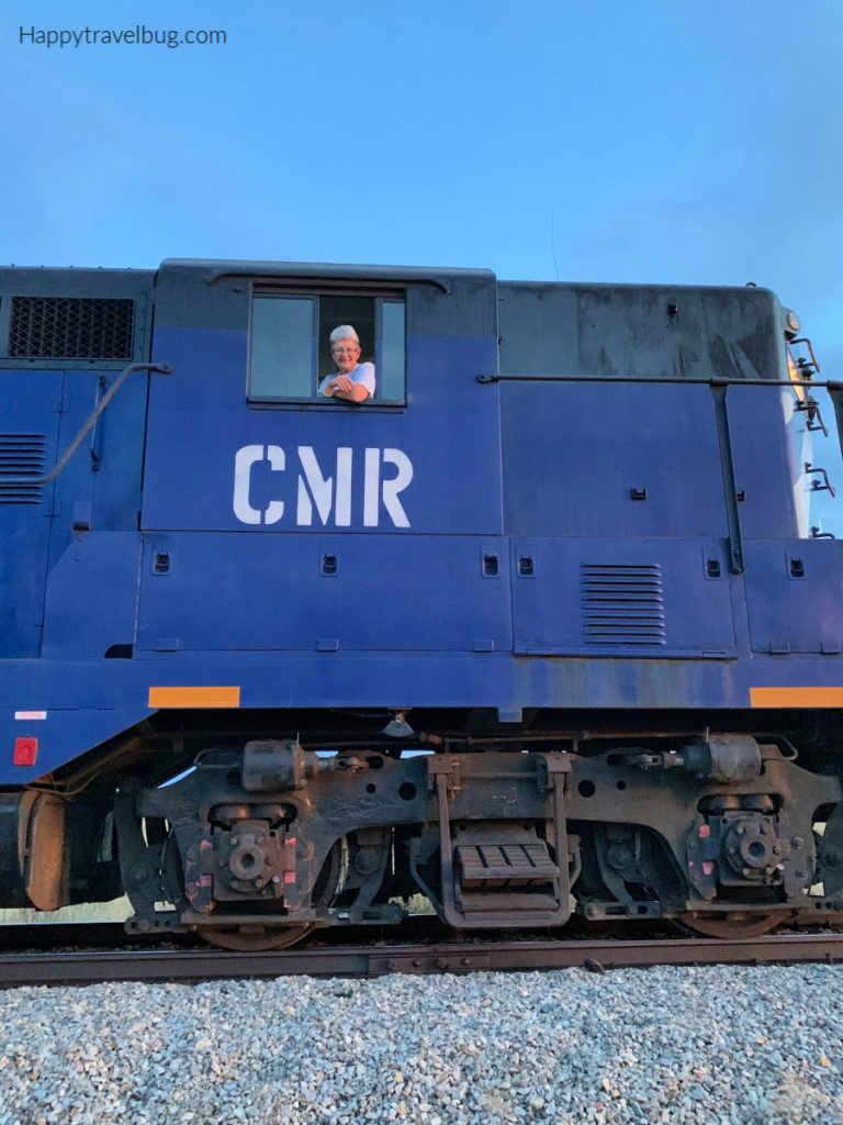 blue train engine with engineer in the window